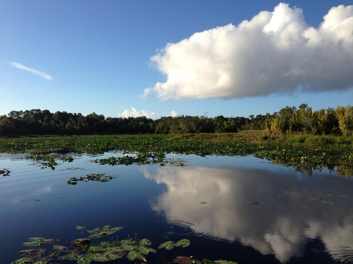 Lake and Shoreline Management
